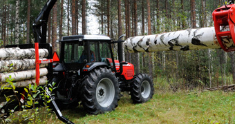 forestry-agriculture